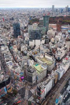 Tour Eiffel, Passage Piéton, Bol D Air, Hachiko, Shibuya Tokyo, Paris Skyline, Tours, Travel, Meiji Shrine