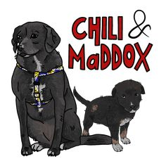 These are my dogs! Chili the big one and Maddox the small one