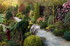 Early morning in upper garden (April 16) | Flickr - Photo Sharing!