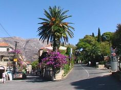 cavtat images - Google Search