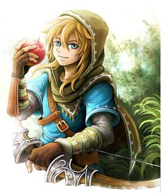 WiiのU用ゼルダの伝説 - The Legend of Zelda for the Wii U