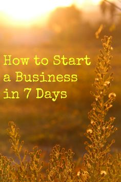 14 entrepreneurs share their step-by-step 7-day startup plans given only a…