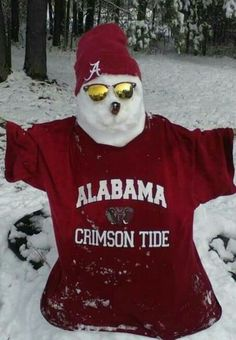 Hehehe:) Crimson Tide Football, Alabama Football, Alabama Crimson Tide, Collage Football, Nick Saban, University Of Alabama, Alpha Phi, Roll Tide, Plane