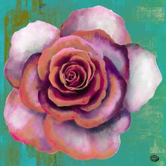 Shiva Art, Marketing And Advertising, Backgrounds, Rose, Flowers, Artist, Plants, Pink, Artists