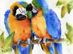 Watercolor Macaws -Something Blue, by Susan Crouch