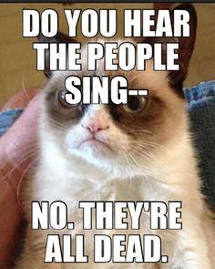les miserables grumpy cat - Google Search