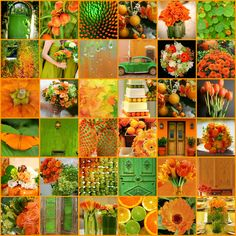 orange and green