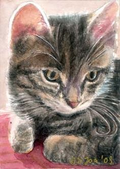 Cat Paintings in watercolor, Cats, Kittens,