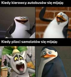 Wtf Funny, Hilarious, Polish Memes, Funny Mems, Good Mood, Best Memes, Really Funny, Make You Smile, One Pic