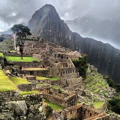 Have wanted to travel to Machu Picchu ever since my husband and I were married, 25 years ago, definitely on my bucket list