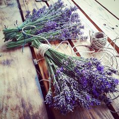 Time for cutting and drying the #lavender when #bees and #bumblebees are done with it.  #garden #flowers #lovingnature #simplethings #weekend #beefriendly #savethebees
