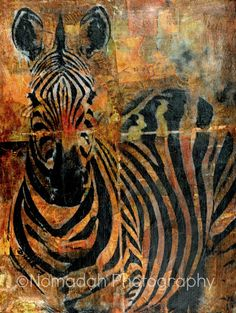 """FREE SHIPPING, African decor, Large format zebra collage print, wall art, zebra painting, autumn colors, fall colors 33.1"""" x 23.4"""""""