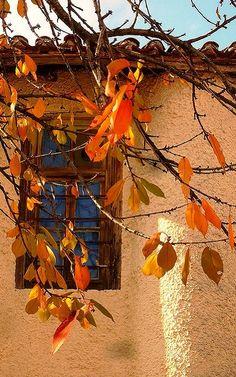 autumn window... | by Thalia Nouarou