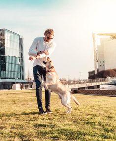 """9,911 kedvelés, 62 hozzászólás – H E N R Y K E T T N E R (@henrykettner) Instagram-hozzászólása: """"Imádtam ezt a kutyát 😍 Próbáltunk egy rendes képet csinálni, de nem nagyon ment 😄 Viszont rájöttem,…"""" Instagram"""
