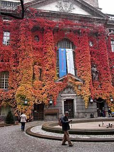 Berlin, Prussian State Library #travels #fall #autumn #nature