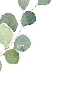 Plant Wallpaper, Flower Background Wallpaper, Flower Backgrounds, Wallpaper Backgrounds, Old Dress, Office Deco, Flower Graphic Design, Story Instagram, Eucalyptus Leaves