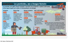 Historia / Histoire des pesticides / History of the pesticides, infographics created by Hugues Piolet for Historia Magazine