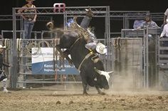 The scariest kind of rodeo ride. Ryder hoped he could make some money doing it.