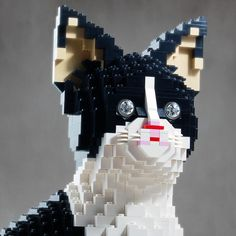 Cool LEGO kitteh.