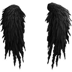 thaliris_createyouremotions_el09.png ❤ liked on Polyvore featuring wings, accessories, filler, ailes and backgrounds