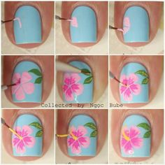 Hibiscus step by step