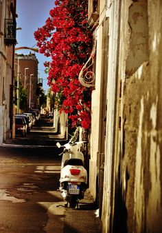 Spend your trip to Italy in private villas in Italy from WIMCO Villas. Stay in Italian villas in Lake Como, Tuscany, Umbria and Amalfi while traveling to Italy. Wonderful Places, Beautiful Places, All About Italy, Italian Street, Italian Villa, Romantic Things, Tumblr, Beautiful Islands, Travel Around The World