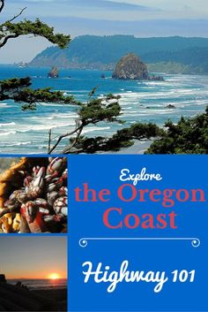 Explore the Oregon Coast on Highway 101, an amazing drive!