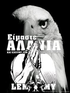 Animals, Animales, Animaux, Animal, Animais
