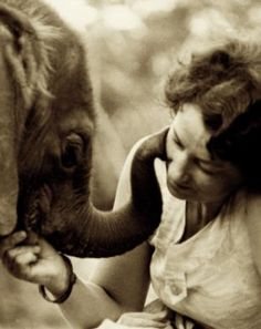 Here's a nice read - Daphne Sheldrick 'My wild, wild love affair:' The extraordinary story of a teenage girl who rescued orphan elephants, let antelopes share her bed and fell in love with a safari hero