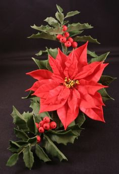 Poinsettia --  Using as a guide to make out of gum paste for our Christmas cake.