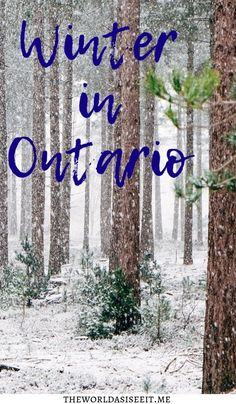10 Awesome Ways to Enjoy Winter in Ontario Looking to make the best out of your Canadian winter? Check out these 10 Awesome Ways to Enjoy Winter in Ontario. North America Destinations, Winter Destinations, Canadian Winter, Canadian Travel, Alberta Canada, Cool Places To Visit, Places To Go, Canada Vancouver, Ontario Travel