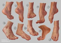 Feet Study 2 by irysching on deviantART