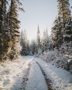 Laneway (Haskill Basin, Montana) by Alex Strohl