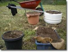 How to Build a Permaculture Vegetable Garden Permaculture Research Institute - Permaculture Forums, Courses, Information & News