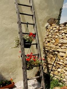 ladder for hanging baskets