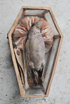 ohmisterfinch: Textile Dead Bird In Glass Coffin By Mister Finch