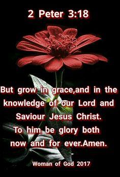 2 Peter 3:18 Scripture Verses, Bible Verses Quotes, Bible Scriptures, Healing Scriptures, Biblical Quotes, Religious Quotes, Spiritual Quotes, Inspirational Verses, In God We Trust