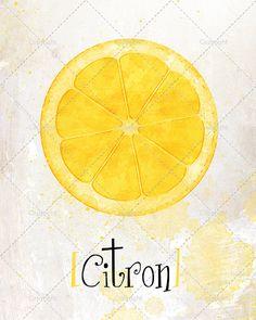 Illustration moderne de fruits Citron. Idéal pour par DysanArt