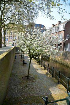 Den Bosch/s'Hertogenbosch The Netherlands
