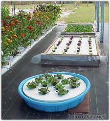 Some day I'll have a place to garden again. when I do, I might try a floating garden. Hydroponics – Build a Floating Garden