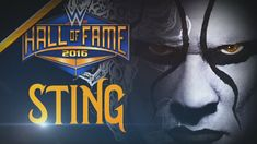 Sting On How He Wants To End His Career, Dream Opponents Other Than The Undertaker And More - StillRealToUs.com