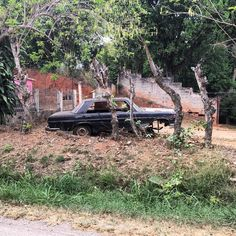 Not very looked after #mercedes #mercedesbenz #sclass #w116 #dirtmerchantautos #derelict #leftbehind #abandoned #morninautos #soloparking #chivera (at La ciudad de Yeiber y Sebastian Tinaquillo Edo. Cojedes)