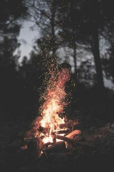 This is what I want to be doing now. Camping.