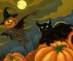Halloween cat (BOO)