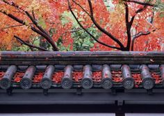 Japanese culture photography
