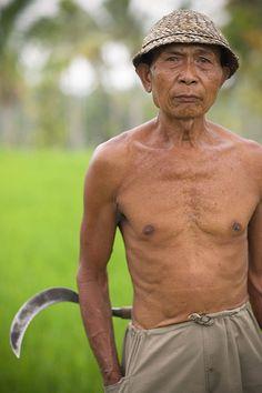 Portrait of Bali rice farmer.
