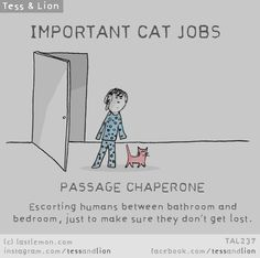 IMPORTANT CAT JOBS: PASSAGE CHAPERONE - Escorting humans between bathroom and bedroom, just to make sure they don't get lost.