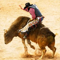 Bull Riding School: See if you can ride 8 seconds on an untamed bull with help from the country's best Rodeo school. #BullRiding #UniqueExperience