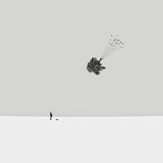 photography minimalist - Tìm với Google