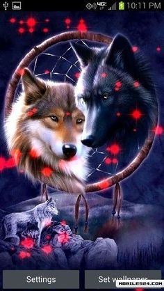Dreamcatcher Wolves T-Shirt - Wolf T-Shirts - Big Face Wolf T-Shirts - Wolves on t-shirts - wolf shirts - beautiful wolves - animal shirts with wolves - christmas presents - ideas for christmas presents Artwork Lobo, Wolf Artwork, Beautiful Wolves, Animals Beautiful, Cute Animals, Beautiful Dogs, Wolf Love, Wolf Wallpaper, Animal Wallpaper